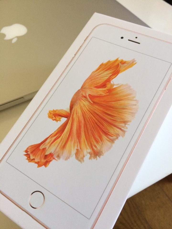 iPhone6s Plusの外箱